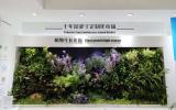 众多LED企业都在积极发力LED植物照明领域