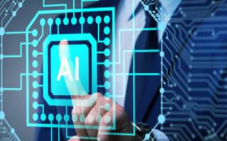 AI技术衍生生物识别新技能——菊纹识别