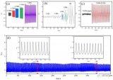 一种基于ZnO纳米棒结构的新型柔性织物基底压电压力传感器
