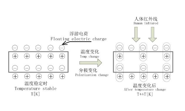 智能感知技术 | 基于SD4101R的人体热释电应用方案