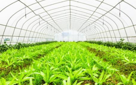 智慧农业的大时代之下将会使用哪些传感器