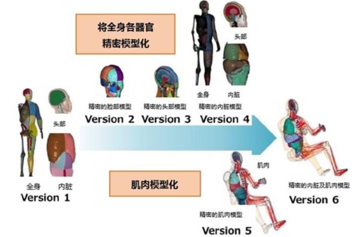 丰田正式无偿公开虚拟人体模型