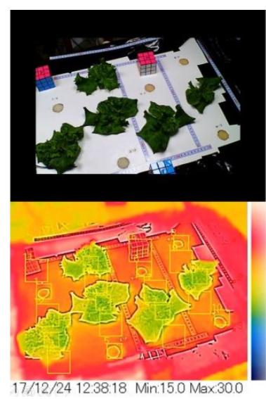 案例分析:FLIR AX8紅外熱像儀實時監控收集...