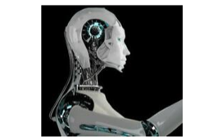 研究团队开发出由加压空气驱动的柔性机器人