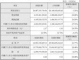 大华股份发布2020年度业绩快报