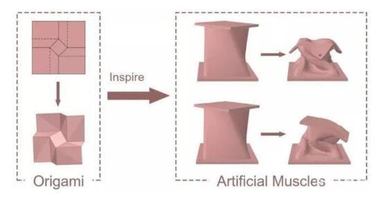 浙江大学教授开发出真空驱动的柔性机器人