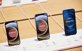 蘋果將iPhone訂單削減20%? OPPO登頂1月中國銷量榜!誰能在中國5G手機市場笑到最后?
