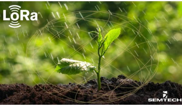 星縱智能借助LoRa?無線技術將智慧農業轉化為現實生產力