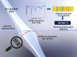 基于微納光學器件傳感器的基本原理