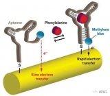 一種新型生物傳感器,可以檢測人體內苯丙氨酸的升降...