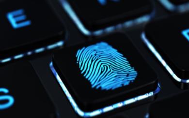 基于DSP实现指纹识别算法的设计方案