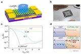 一種柔性碳納米管-量子點神經形態人工視覺光電傳感器