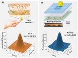 中外科研团队研发柔性磁性薄膜能让机器人的假肢指尖...
