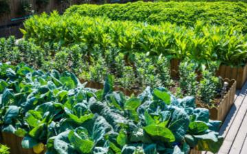 耕地保护与质量提升监测点设备的项目说明