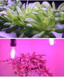 广明源LED植物补光灯