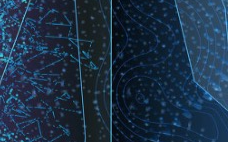 LED企业晶科电子获南沙区总部企业表彰