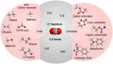 中国研究团队研究出用于CO2电催化转化的离子液体基电解质