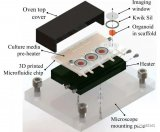 科学家使用3D打印技术创建了一个具有适应性且可重复使用的平台