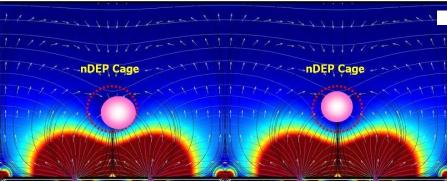 基于NI嵌入式控制器实现检测和分离循环肿瘤细胞研究