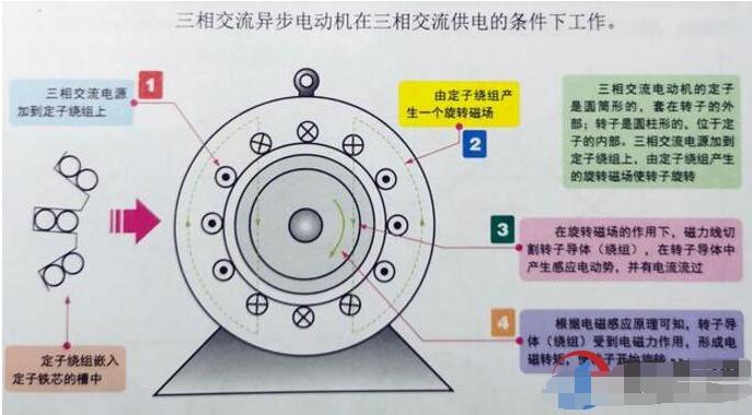 三相异步电动机旋转原理是什么?