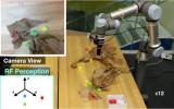 研究人员利用无线电波帮助机器人找到隐藏的物体