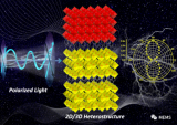 福建物构所单晶异质结偏振光探测研究获进展