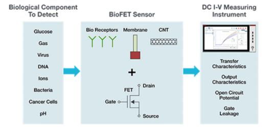 4200A-SCS參數分析儀簡化BioFETs DC I-V表征的四種方式