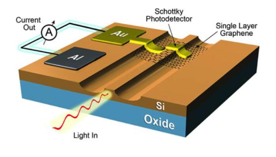 基于石墨烯的硅基光电探测器的技术