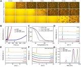 大面积甲脒铯基钙钛矿薄膜与高效稳定模组