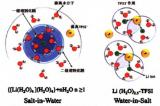 解析高电压水系电解液最新研究进展