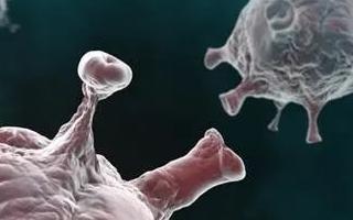 一种运用人工DNA寡核苷酸适配子识别病毒刺突蛋白的传感器