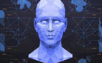 全球人臉識別技術公司的總體情況
