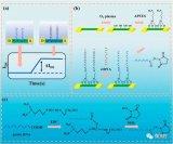 百余根硅纳米线阵列监测循环肿瘤DNA