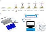 一种新型的微流控-电化学检测系统