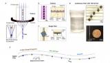 快讯:电子织物融合微型器件的数字纤维与智能织物