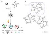 利用单宁酸与铁离子的配位作用制备了功能化四氧化三铁磁性纳米颗粒
