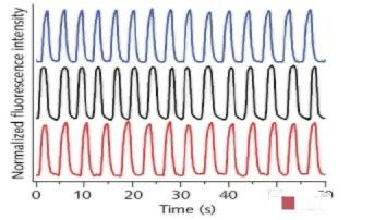 微流控在便携式紫外水质传感器中的角色