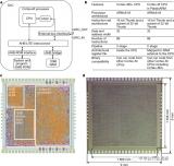 一种32位Arm架构的微处理器详细介绍