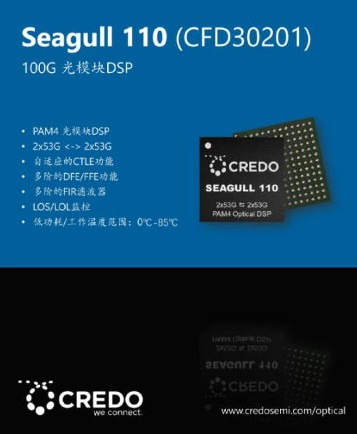 Credo 光DSP再添新成员:Seagull 110和Seagull XR8