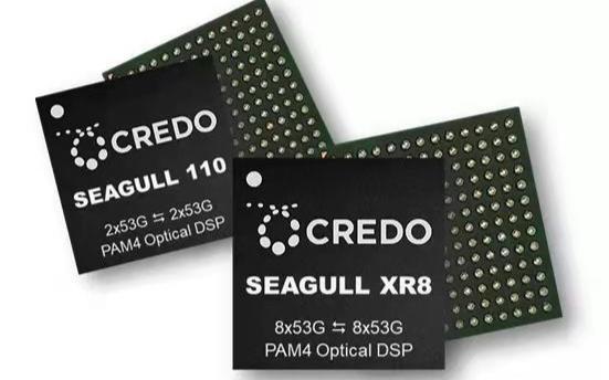 Credo專注高速連接方案 新一代光DSP芯片已量產
